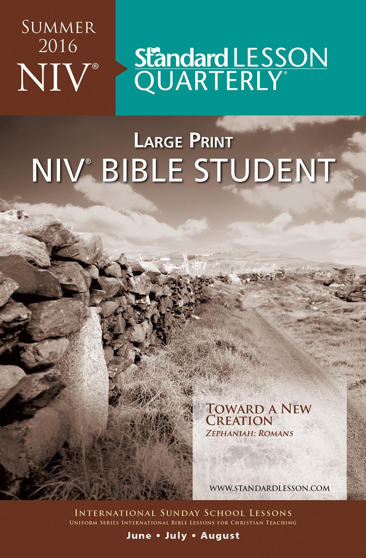 NIV Large Print